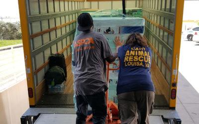 Louisa Community Animal Response Team